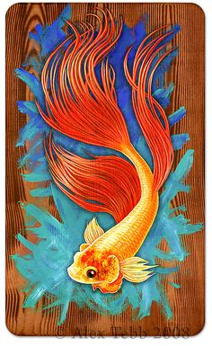 Gold Fighting Fish by Alex Tebb 2008