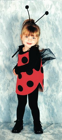 Nice Costumes My 1St Lady Bug Toddler Costume just added...