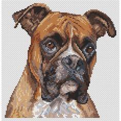 Boxer dog (chart download)