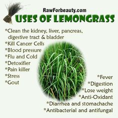Lemongrass Tea and Benefits of Lemongrass