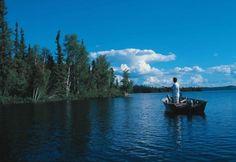 Parque Nacional Wood Buffalo, Canadá, EDMONTON. En el estado de ALBERTA y declarado Patrimonio de la Humanidad por la UNESCO se encuentra el Parque Nacional Wood Buffalo, situado en una vasta zona salvaje, fue creado específicamente para laprotección del bisonte americano, y alberga una de las mandas más grandes autocontroladas de estos animales en libertad. Entre las 47 especies de mamíferos podemos encontrar también osos negros, caribúes, zorros árticos, alces y más de 227 especies de…