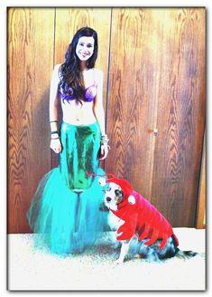 dog costumes dorothy
