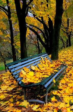 Park It on a Bench Beautiful Nature Wallpaper, Beautiful Landscapes, Beautiful World, Beautiful Places, Autumn Scenes, Fall Wallpaper, Autumn Photography, Fall Pictures, Parcs