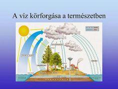 Testvériskolai Projekt Iregszemcse - Győr: A Víz Világnapja Green Day, 3 Years, School, 3 Year Olds