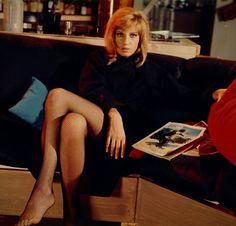 Monica Vitti. Italian Women, Italian Beauty, Panty Slip, Actor Studio, Italian Actress, Classic Actresses, Women Legs, Old Hollywood Glamour, Actors
