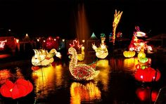 BNS (Batu Night Spectacular), Malang