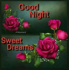 Good Night Lover, Cute Good Night, Good Night Friends, Good Night Wishes, Good Night Sweet Dreams, Good Night Moon, Good Night Image, Good Morning Flowers Pictures, Funny Good Morning Images
