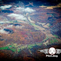 View out the window as we flew Layla from a NC kill shelter just an hour before she was supposed to be put down. We flew her from Raleigh NC to Dayton OH where she is going to be trained as a service dog for a military vet with PTSD. Renee who you see here is going to be the trainer. http://pilot.dog #aviation #pilotnpaws #instaaviation #instagramaviation #dog #dogrescue #pilotdog #pet #pilot #instagrampilot #instapilot #instadog #foreverhome #rescuedog #dogs #pilotsnpaws #ptsd #military…