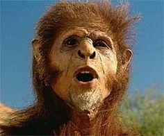 Oldest Known Skeleton of Man | Homo Habilis, Homo Erectus, Homo Sapiens (Archaic), Homo Sapiens ...