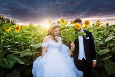 Mojej tohtoročnej neveste Lucke prajem všetko najlepšie k dnešným bosoráckym meninám <3 #weddingportrait #weddingphotography #weddingphotographer #lookslikefilmweddings #slovakphotographer #nikon #nikon_cz_sk #weddingdress #bride #groom #love #slovakia #svadba #svadbing #svadobnyfotograf #shesaidyes #kezmarok #hightatras #slovakparadise #slovenskyraj #sunflower #sunflowers #sunflower🌻 #sunflowers🌻 #realwedding #photooftheday #summer #pod1000 #weddingphoto #weddingphotoinspiration Nikon, Paradise, Wedding Dresses, Fashion, Bridal Dresses, Moda, Bridal Gowns, Wedding Gowns, Weding Dresses