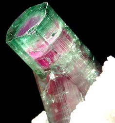 Mind blowing Watermelon Tourmaline!! Pink occurs first, to be much later covered by green!! W O W #pxiecrystals -x-