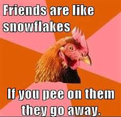 friends-are-like-snowflakes-awkward-chicken-meme