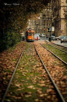 L'autunno è arrivato in corso Cairoli (Foto di Roberto Barranca)