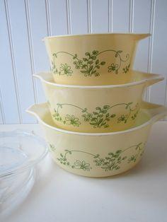 Pyrex Shenandoah pattern plus clear bowl