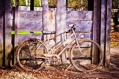 Ride my bike!