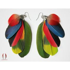 Colorful feather earrings, Parrot feathers, Red feathers, Parrot... ($52) ❤ liked on Polyvore featuring jewelry, earrings, colorful earrings, blue dangle earrings, lime green jewelry, red feather earrings and dangle earrings