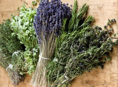 Herbes de Provence Collection of Seeds - A Provençal mixture of 9 Herbs - All Organic Culinary Herbs Organic Herbs, Natural Herbs, Aromatic Herbs, Mint Herb, Fish And Meat, Herb Seeds, Planting Seeds, Olive Oil, Cool Things To Buy