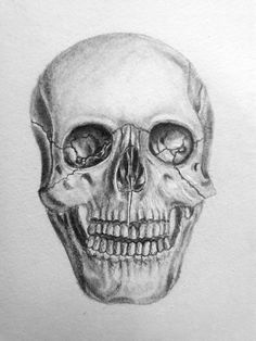 Please give credit as this is my own drawing Pinterest @naomiokayyy Skull, drawing, artsy, anatomy, skeleton, Bones, art, draw, painting,