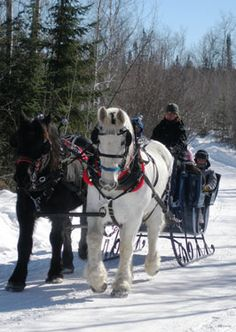 Guys, I'm a little disappointed we missed out on a big snow in NYC this winter. So today I'm taking an imaginary holiday via a Sleigh Ride