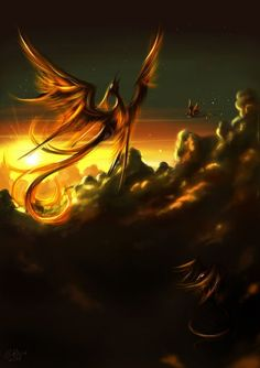 Like the Phoenix I rise from the ashes.