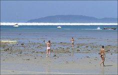 Thailand drawback before tsunami   tsunami_wave_coming_time_to_run.jpg (470×301)