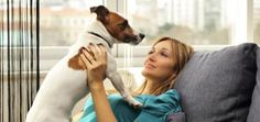 The 10 Best Apartment Dogs: Why Size Doesn't Matter | Dogster