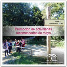 Actividades recomendadas que te proponemos para disfrutar durante el mes de mayo en los espacios naturales protegidos de Andalucía.