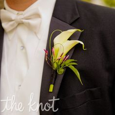 Garden Rose Boutonniere rustic boutonniere, ivory garden rose boutonniere, rustic