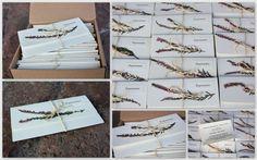 zaproszenia ślubne z suszonymi wrzosami / dried heather wedding invitations - Pracownia Faramuszka