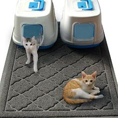 Cats are cute but litter scatter all over the home can be disgusting! Check out the world's largest cat litter mat. http://www.amazon.com/gp/product/B016PHLNRA/ref=s9_hps_bw_g199_i2