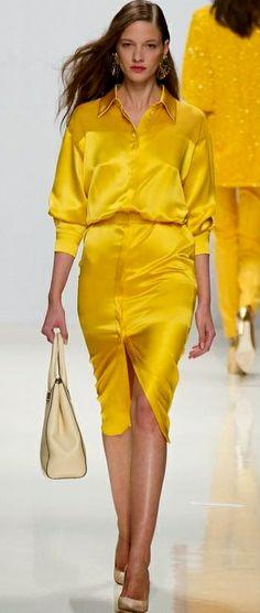 Valentin Yudashkin Spring, Summer Collection For 2014