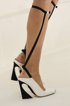 Dior Haute Couture S/S 2014 Shoes