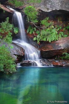 Waterfall Upper Gledhill Falls in Ku-ring-gai Chase National Park, Sydney, Australia. Photo by Yury Prokopenko. via yury on flickr