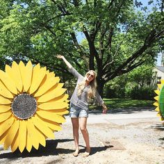Sunflowers at @sunfl