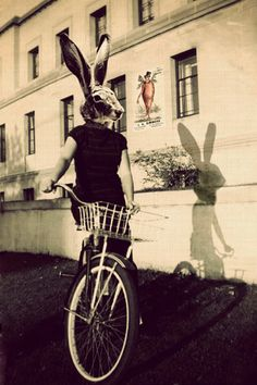Elle Moss is one of my favourite artists and one of the best photographers I have come across in recent times. Bunny on Bicycle  by Elle Moss
