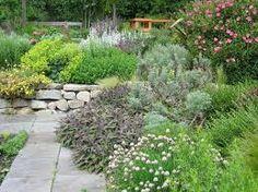 attractive edible garden - Google Search