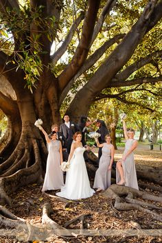 A bridal party filled with family makes the best fun, Heidi & Darren's wedding with photos in Hyde Park