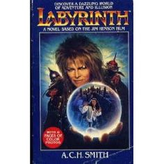 Labyrinth.. I remember how excited i was to finally get this book.. i still have it around here somewhere..