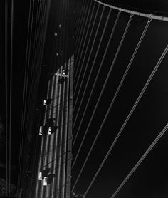 From the North Tower of the Golden. photography by John Gutmann    Gate Bridge, San Francisco, 1947