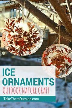 Wonderful Wintertime Frozen Sun Catcher Ice Ornaments