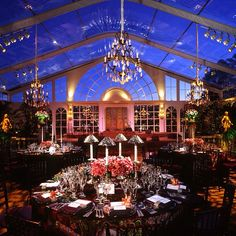 Gorgeous event under the stars.#sacks_productions