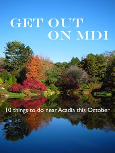 Mount Desert Island, Maine has much to offer year-round. Here is a round-up of some great activities for October Mount Desert Island, Getting Out, Maine, Things To Do, October, Events, Activities, Park, Places