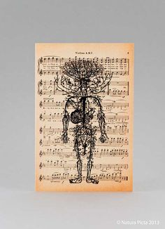 Shop for on Etsy, the place to express your creativity through the buying and selling of handmade and vintage goods. Circulatory System, Cursed Child Book, Anatomy, Vintage World Maps, Harry Potter, Greeting Cards, Halloween, Handmade Gifts, Etsy