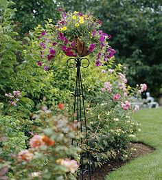 A great way to add height to your garden with potted petunia, strawflower and creeping zinnia.