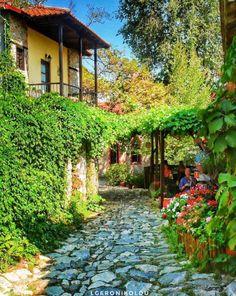 Spring in Paleos Panteleimonas village, Pieria #Macedonia #Greece