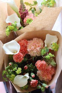 Succulents, Flowers, Succulent Plants, Royal Icing Flowers, Flower, Florals, Floral, Blossoms