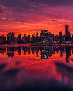 That iconic skyline 🔥 Puddle reflect game was strong with this shot, thanks possibly the best sunset I have ever… Best Sunset, Amazing Architecture, Amazing Photography, State Parks, New York Skyline, Reflection, Sunrise, Shots, Thankful