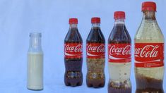coke vs. milk chemistry experiment - gross results!!