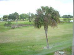 Golf destination in Florida Travel Destinations, Golf, Florida, Vacation, Fun, Road Trip Destinations, Vacations, Destinations, The Florida