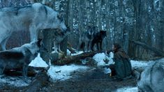 Game of Thrones spinoff series 10,000 Ships to be written by Amanda Segel Ned Stark, Durham, Wyoming, Canis, Game Of Thrones Prequel, Tennessee, Ohio, Scene, Horses